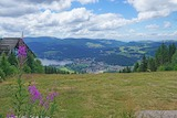 titisee hochfirst 858718 960 720